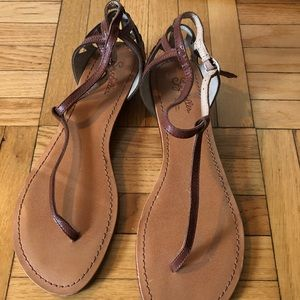 Never worn brown seychelles sandals